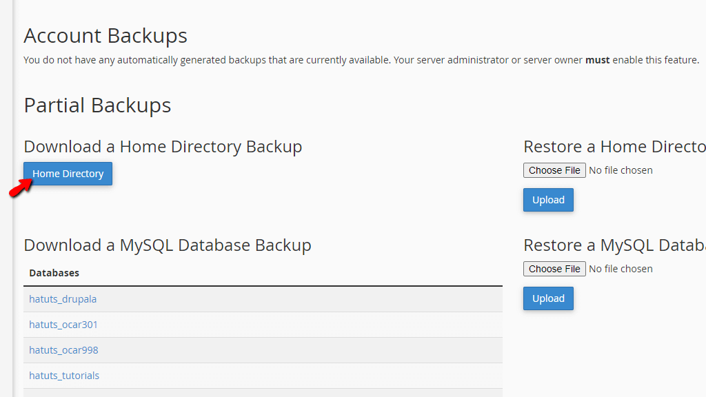 Generate cPanel Home Directory Backup