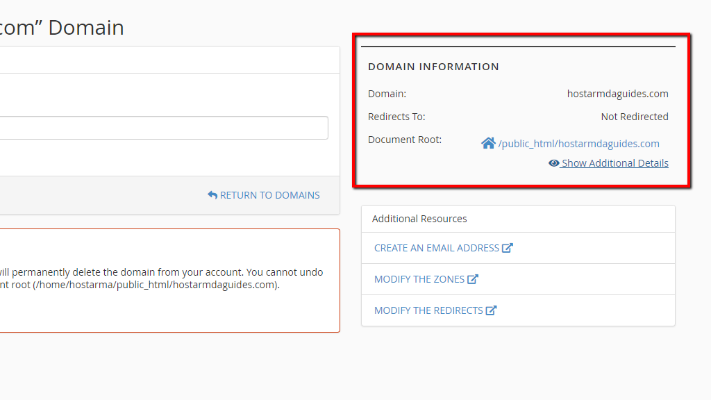 Domain Information section