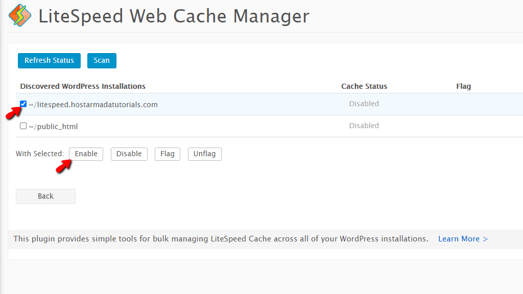 Install WordPress LiteSpeed Cache Plugin for selected site
