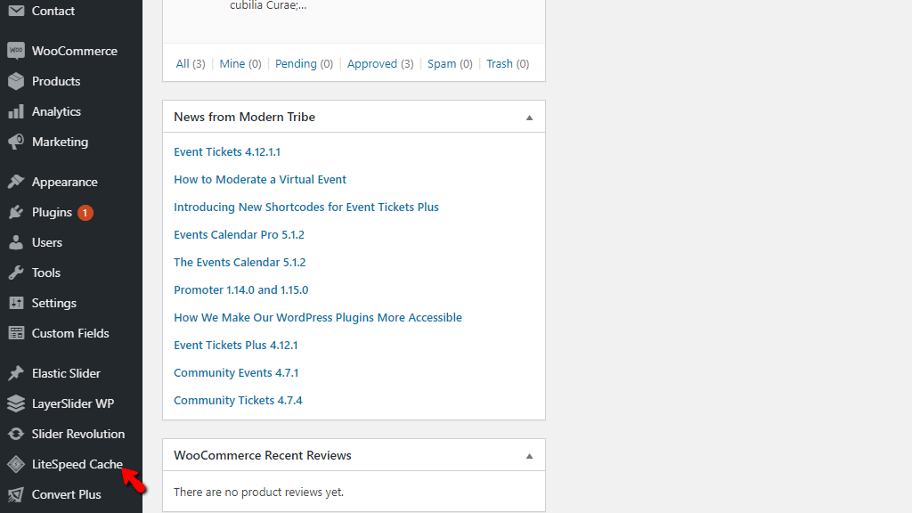 LiteSpeed Cache plugin in WordPress Admin Dashboard