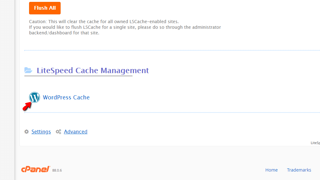 LSCache feature WordPress Cache