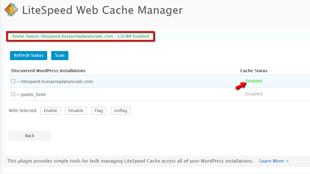 WordPress LiteSpeed Cache Plugin Successfully Installed